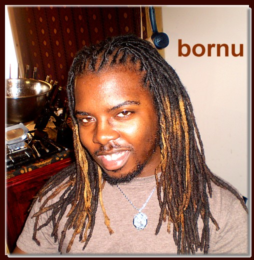 Bornu Loc Extensions Dreadlocks Afro Kinky Human Hair
